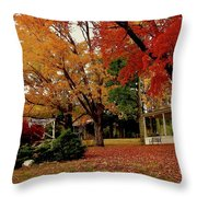 Sunday In The Country 3 Throw Pillow