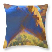 Sunday Morning At The Red Willows Throw Pillow