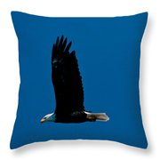 Sunday Morning Flight Throw Pillow
