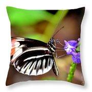Sunday Sip Throw Pillow
