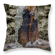 Sunday Visit Throw Pillow