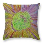Sundelicious Throw Pillow