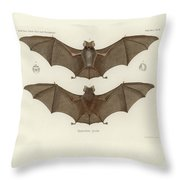 Sundevall's Roundleaf Bat Throw Pillow