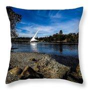Sundial Bridge Throw Pillow