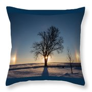 Sundogs Around A Tree Throw Pillow