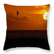 Sundown Flight Throw Pillow
