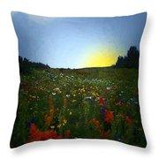 Sundown Wildflower Meadow Throw Pillow