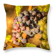 Sundrenched 0046 Throw Pillow