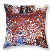 Sundrenched Rosehips Throw Pillow