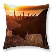 Sunet Silhouette Throw Pillow
