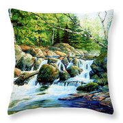 Sunfish Creek Throw Pillow