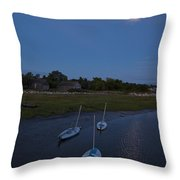 Sunfishes In Moonlight Throw Pillow