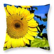 Sunflower 2 Throw Pillow