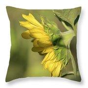Sunflower 2016-1 Throw Pillow