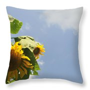 Sunflower 3 Throw Pillow