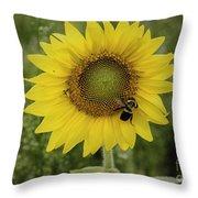 Sunflower Among The Weeds Throw Pillow