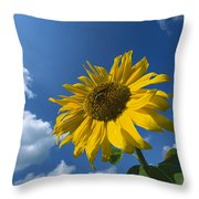 Sunflower And Blue Sky Throw Pillow