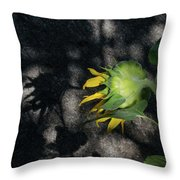 Sunflower And Shadow Throw Pillow