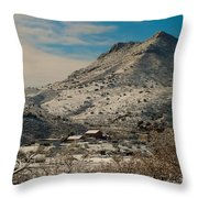 Sunflower Arizona 2 Throw Pillow