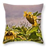 Sunflower Art 2 Throw Pillow