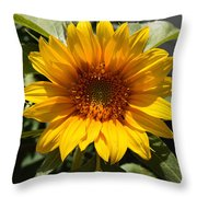 Sunflower Art- Summer Sun- Sunflowers Throw Pillow