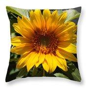 Sunflower Art- Summer Sun- Sunflowers Throw Pillow