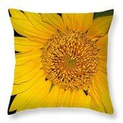 Sunflower At Dusk Throw Pillow