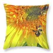 Sunflower Bees Throw Pillow