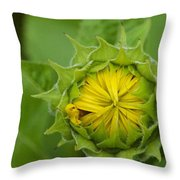Sunflower Bud Throw Pillow
