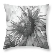Sunflower Dawn Black And White Drawing Throw Pillow