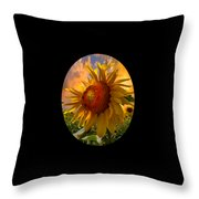 Sunflower Dawn In Oval Throw Pillow