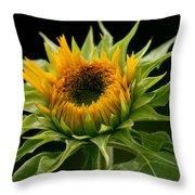 Sunflower - Doubleshine Throw Pillow