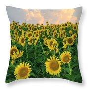 Sunflower Faces At Sunset Throw Pillow