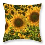 Sunflower Family Throw Pillow