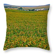 Sunflower Farm In Northwest North Dakota  Throw Pillow