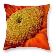 Sunflower Fire 1 Throw Pillow