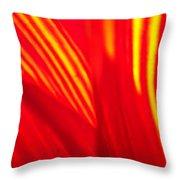Sunflower Fire 3 Throw Pillow