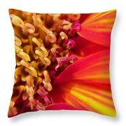 Sunflower Fire 4 Throw Pillow