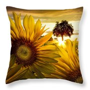 Sunflower Heaven Throw Pillow