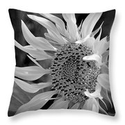 Sunflower In Contrast Throw Pillow