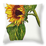 Sunflower In Gouache Throw Pillow