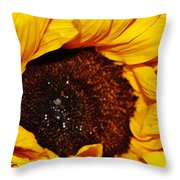 Sunflower In The Sun Throw Pillow