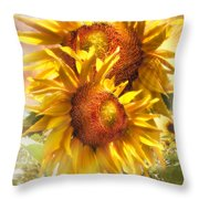 Sunflower Light Throw Pillow