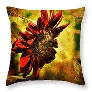 Sunflower Throw Pillow by Lois Bryan