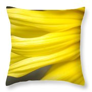 Sunflower Throw Pillow by Mary Van de Ven - Printscapes