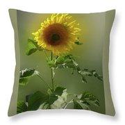 sunflower No. 10 Throw Pillow