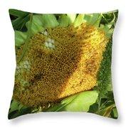 sunflower No.2 Throw Pillow