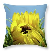 Sunflower Opening Sunny Summer Day 1 Giclee Art Prints Baslee Troutman Throw Pillow