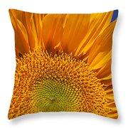 Sunflower Petals Throw Pillow