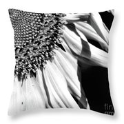 Sunflower Petals In Black And White Throw Pillow